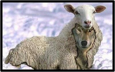 Beware of False Prophets (con't)